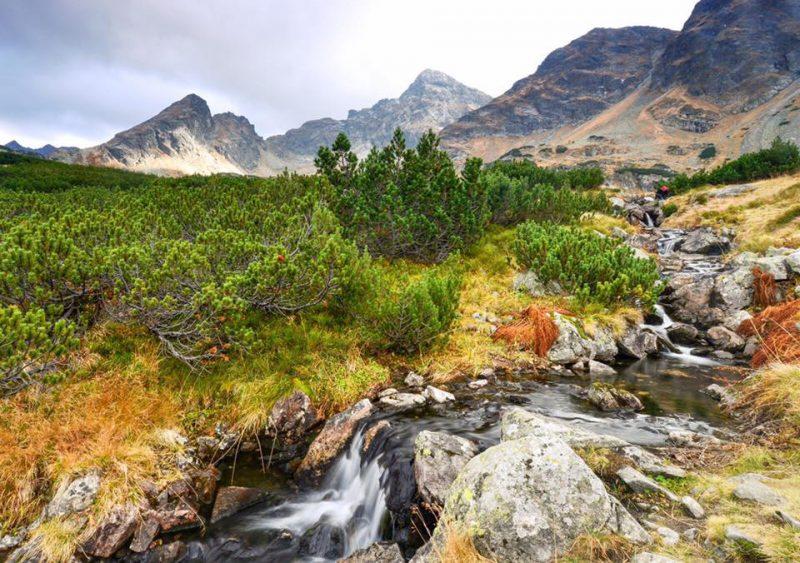 Fotografia Art Góry.Zejście z Kasprowego. Tarty