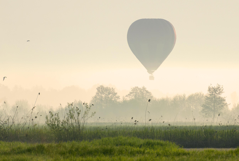 Balon nad mokradłami