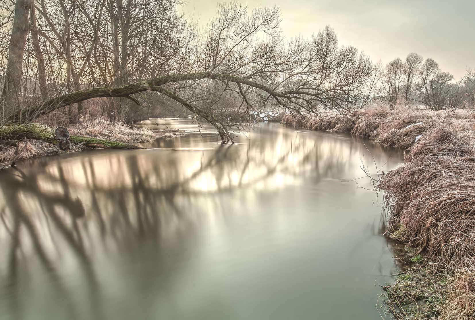 Zatrzymana woda. Jeziorka okolice Łosia